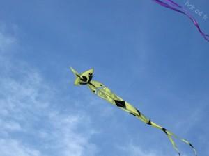 Un cerf-volant au Festival de l'air