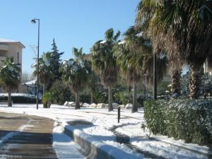 Neige à Fréjus
