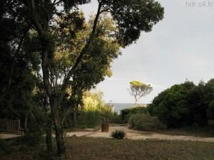 Parc Areca St-Aygulf photographie originale